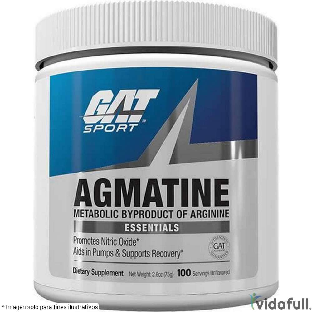 Agmatina GAT Pre-Entrenamiento de GAT Bajar de Peso Bien