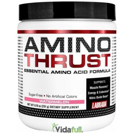 Amino Thrust Ponche de Frutas Labrada